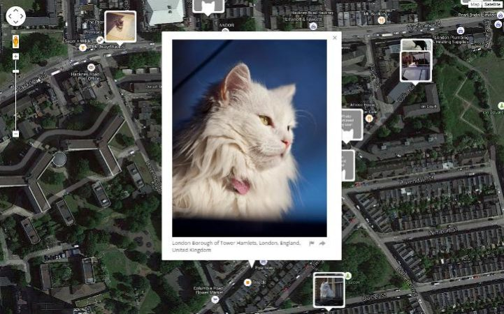 big-bang-cat-large_trans++bFoXn4d1uVNGRa1pDHVYNKv21HOjHNdyBUHQ3j_f6rM